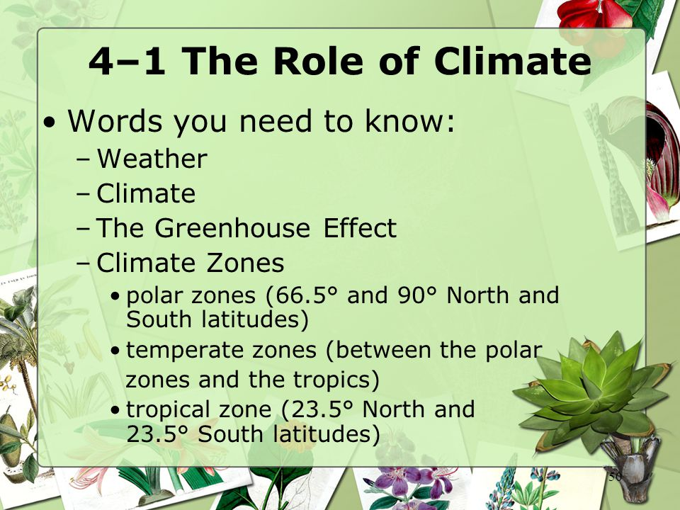 4–1 The Role of Climate Words you need to know: Weather Climate
