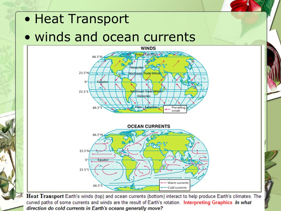 Heat Transport winds and ocean currents