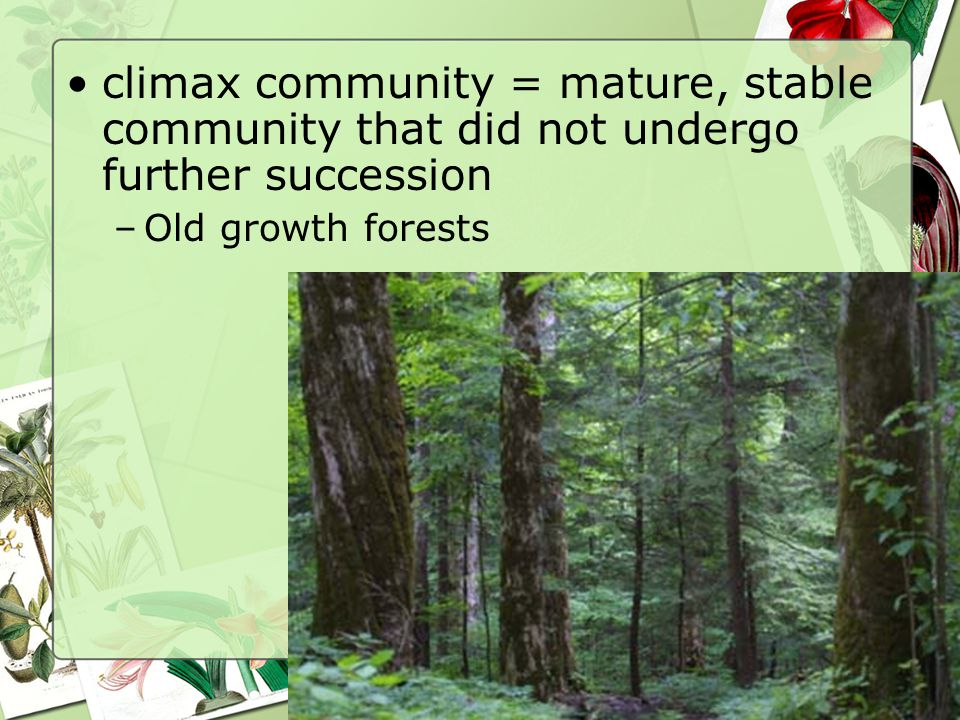 climax community = mature, stable community that did not undergo further succession