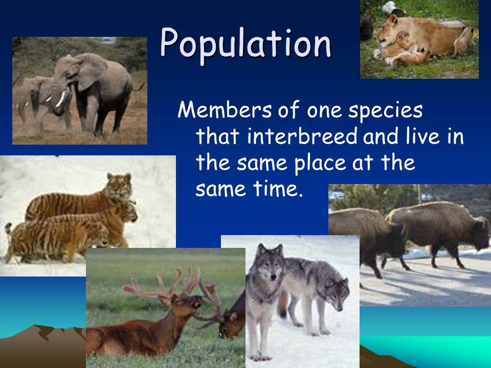 Population Members of one species that interbreed and live in the same place at the same time.