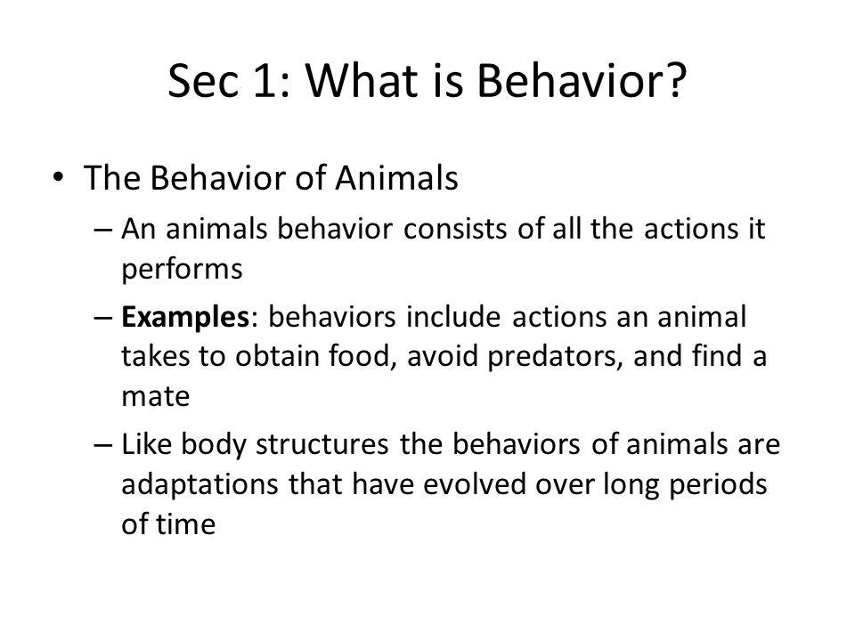 Sec 1: What is Behavior The Behavior of Animals