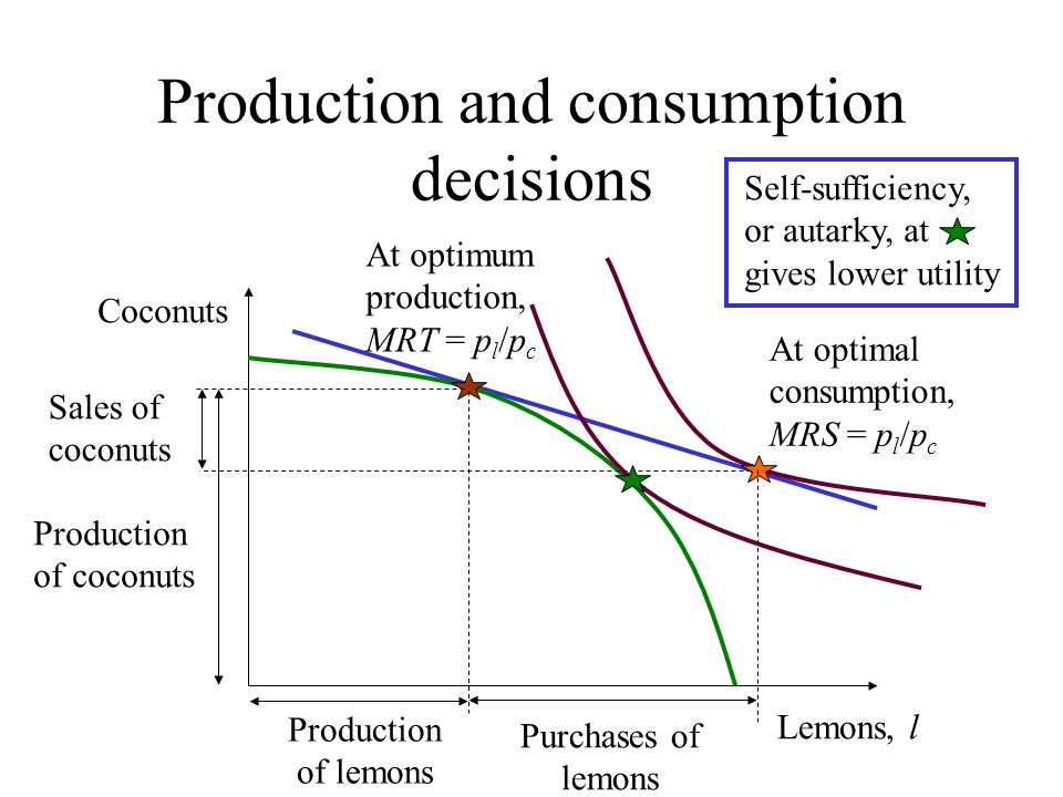 Production and consumption decisions