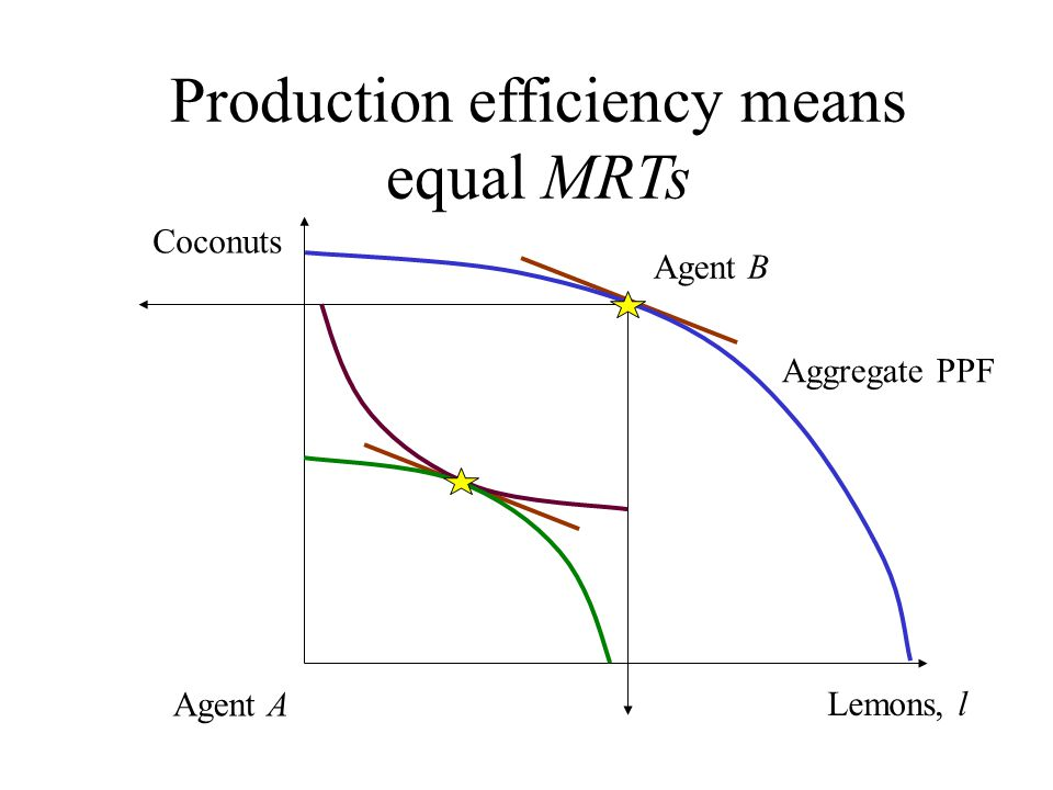 Production efficiency means equal MRTs