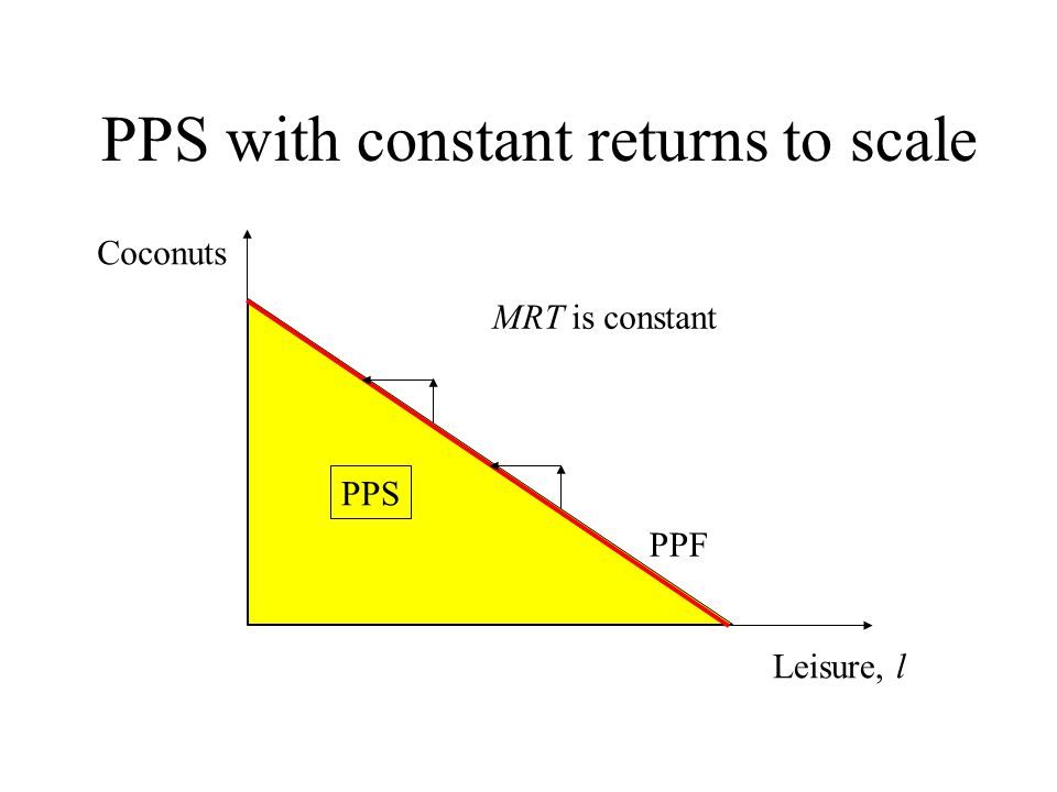 PPS with constant returns to scale