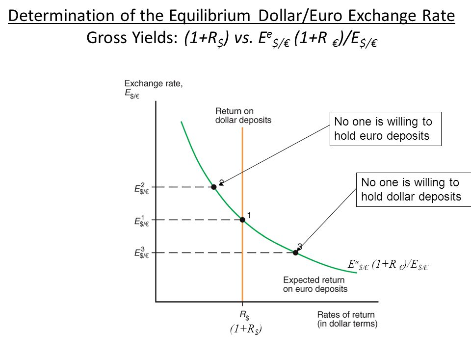 Determination of the Equilibrium Dollar/Euro Exchange Rate Gross Yields: (1+R$) vs. Ee$/€ (1+R €)/E$/€