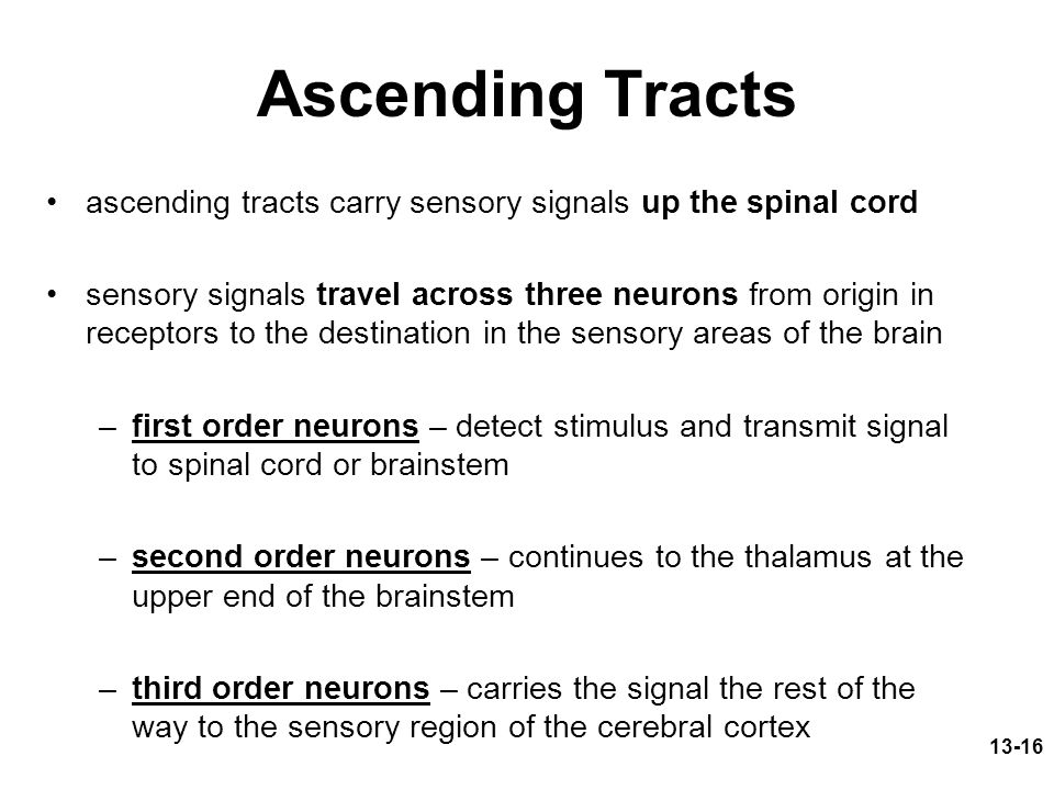 Ascending Tracts ascending tracts carry sensory signals up the spinal cord.