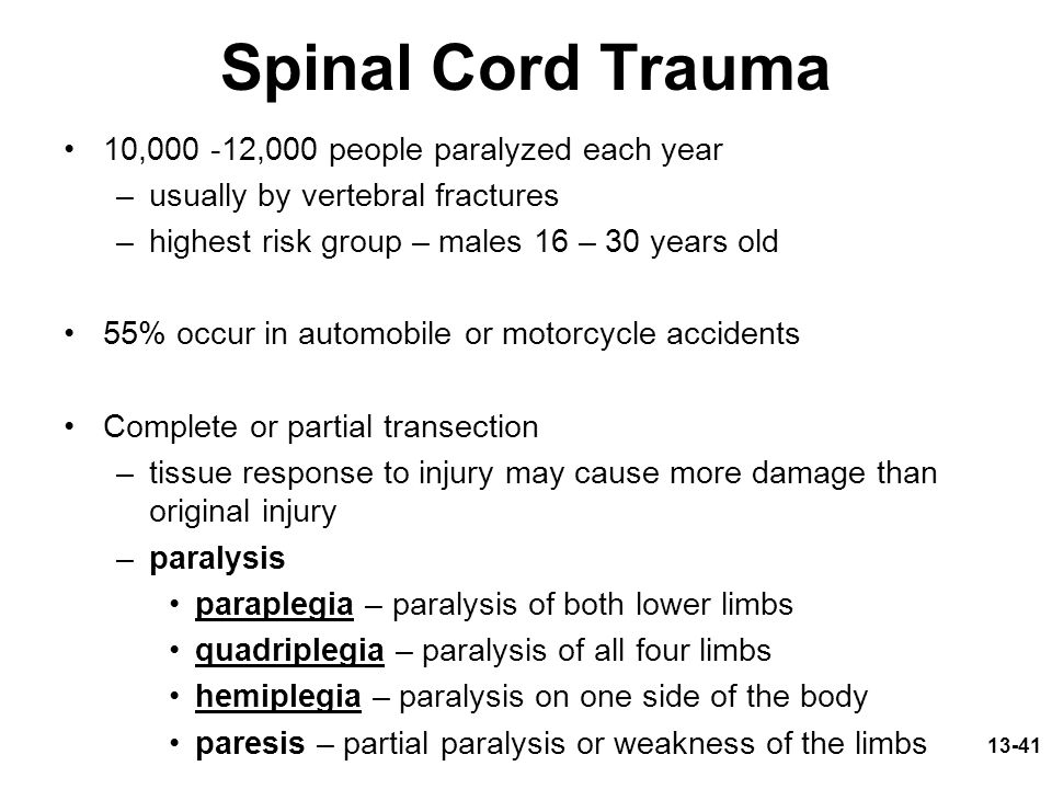 Spinal Cord Trauma 10,000 -12,000 people paralyzed each year