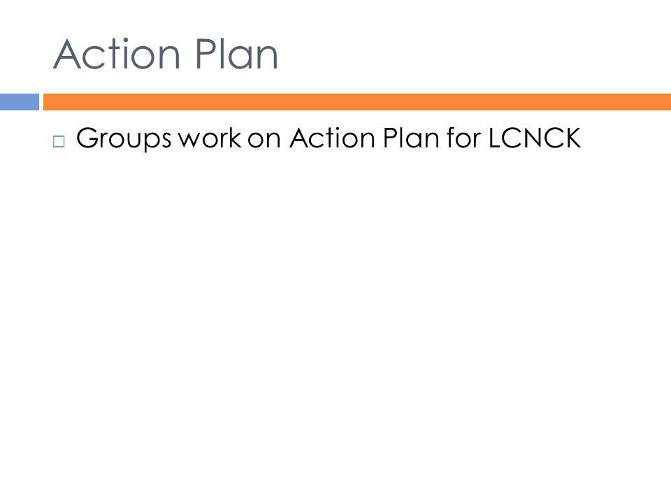 Action Plan Groups work on Action Plan for LCNCK