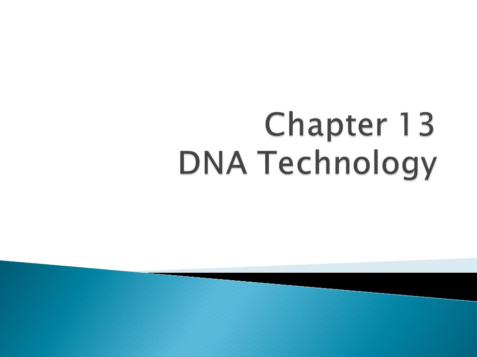 Chapter 13 DNA Technology