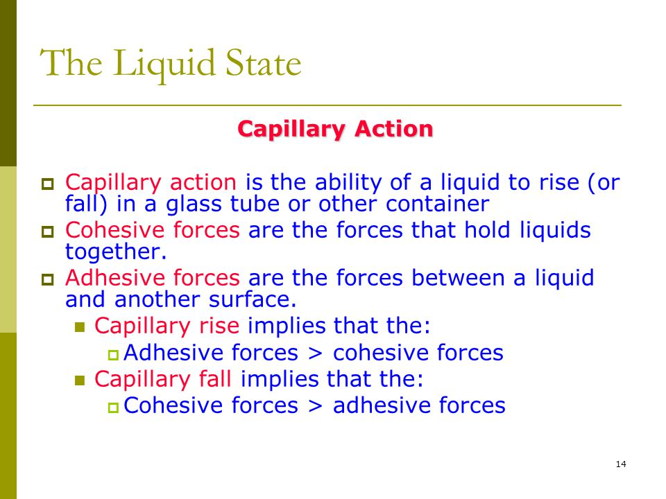 The Liquid State Capillary Action