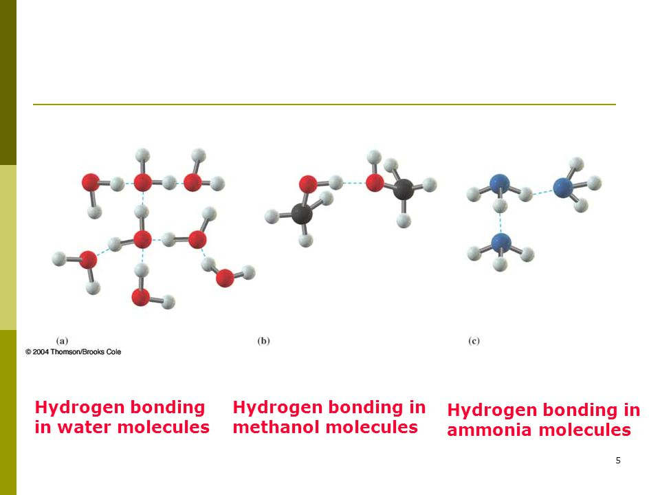 Hydrogen bonding in water molecules