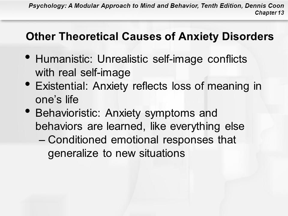 Other Theoretical Causes of Anxiety Disorders