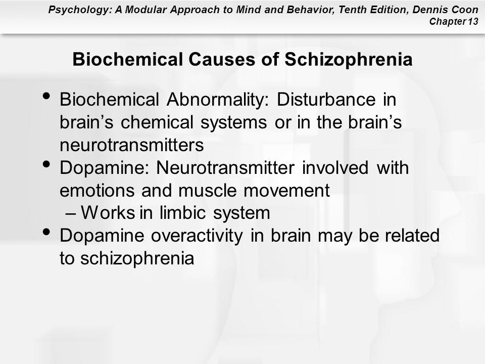 Biochemical Causes of Schizophrenia