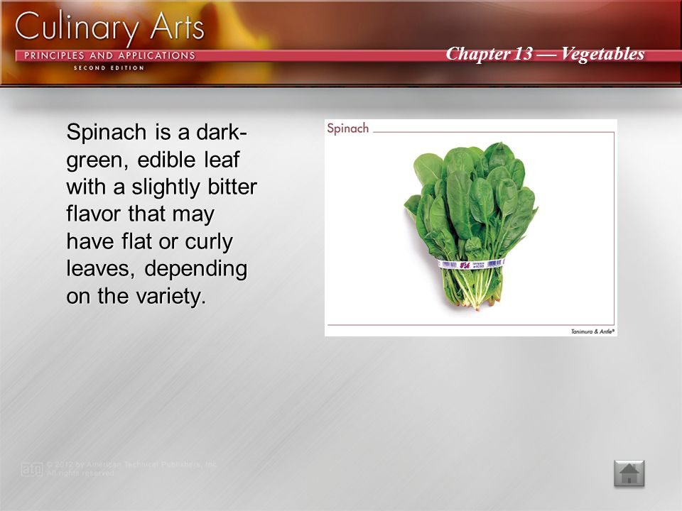 Spinach is a dark-green, edible leaf with a slightly bitter flavor that may have flat or curly leaves, depending on the variety.