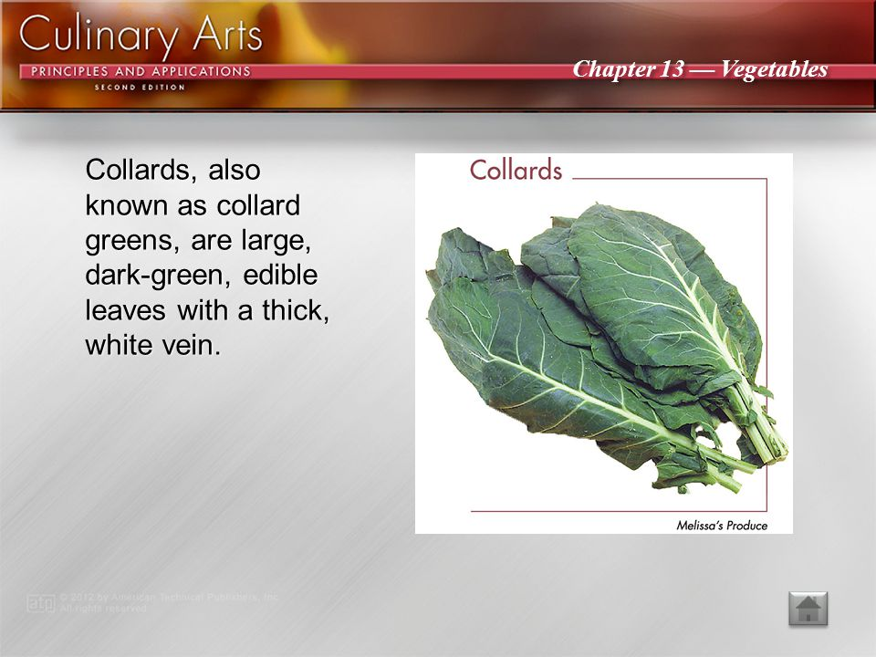 Collards, also known as collard greens, are large, dark-green, edible leaves with a thick, white vein.