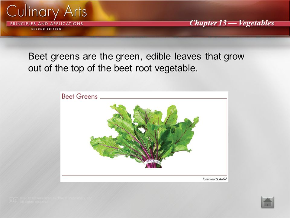Beet greens are the green, edible leaves that grow out of the top of the beet root vegetable.