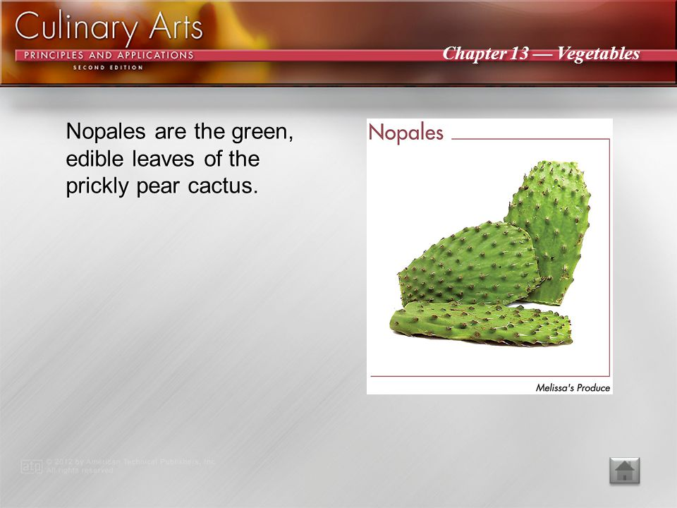 Nopales are the green, edible leaves of the prickly pear cactus.