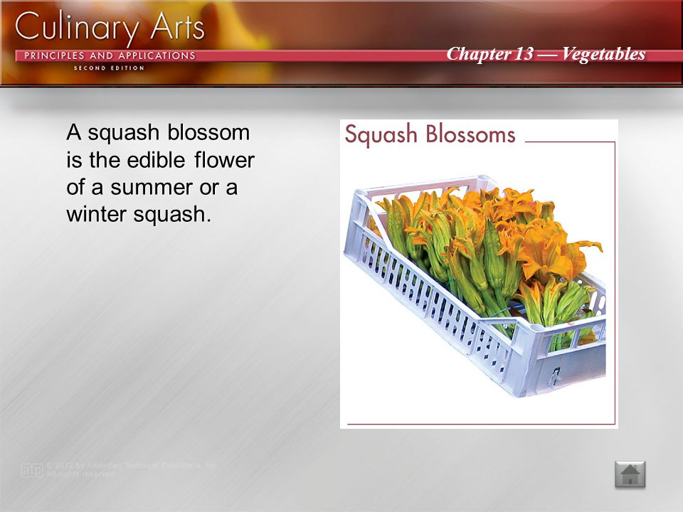 A squash blossom is the edible flower of a summer or a winter squash.