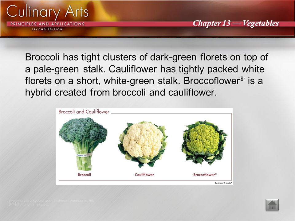 Broccoli has tight clusters of dark-green florets on top of a pale-green stalk. Cauliflower has tightly packed white florets on a short, white-green stalk. Broccoflower® is a hybrid created from broccoli and cauliflower.