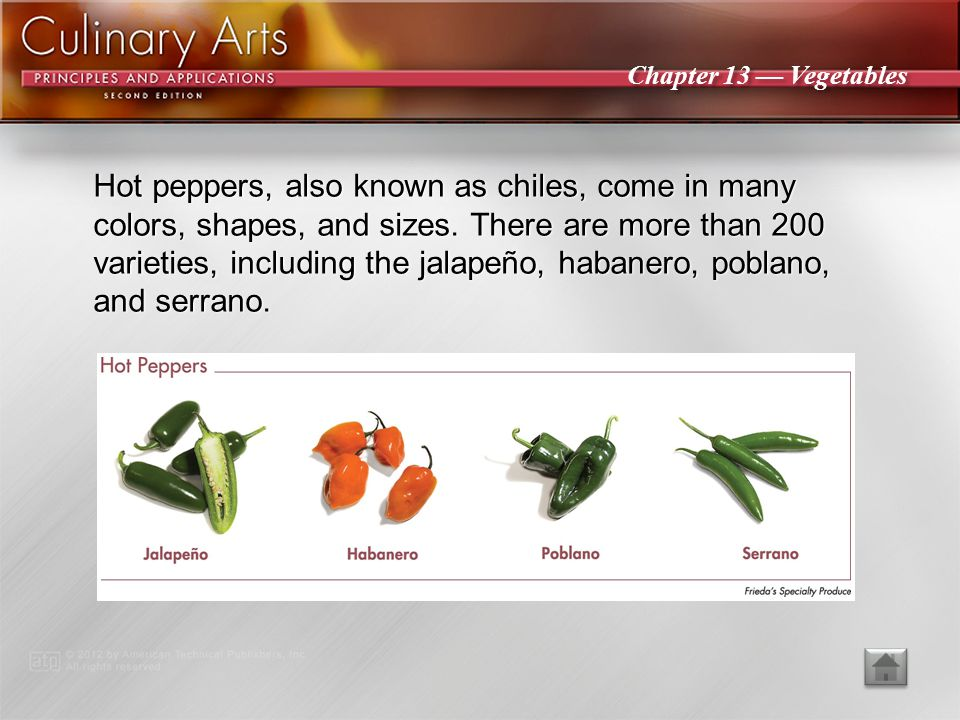 Hot peppers, also known as chiles, come in many colors, shapes, and sizes. There are more than 200 varieties, including the jalapeño, habanero, poblano, and serrano.