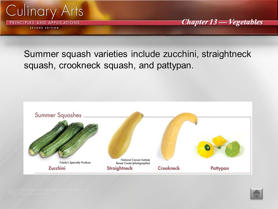 Summer squash varieties include zucchini, straightneck squash, crookneck squash, and pattypan.