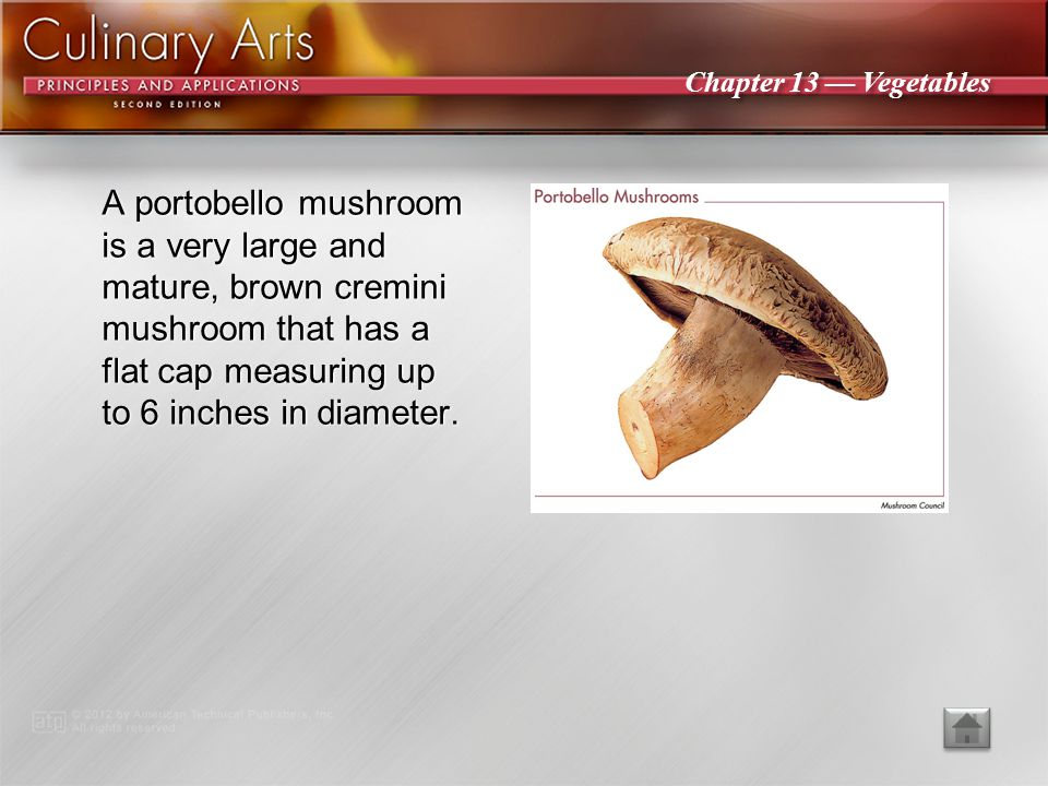 A portobello mushroom is a very large and mature, brown cremini mushroom that has a flat cap measuring up to 6 inches in diameter.