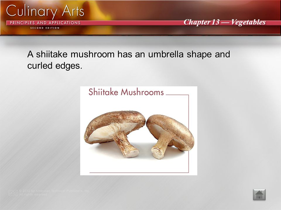 A shiitake mushroom has an umbrella shape and curled edges.