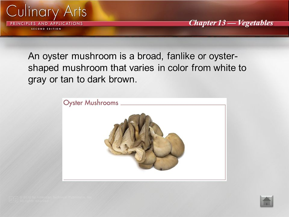An oyster mushroom is a broad, fanlike or oyster-shaped mushroom that varies in color from white to gray or tan to dark brown.