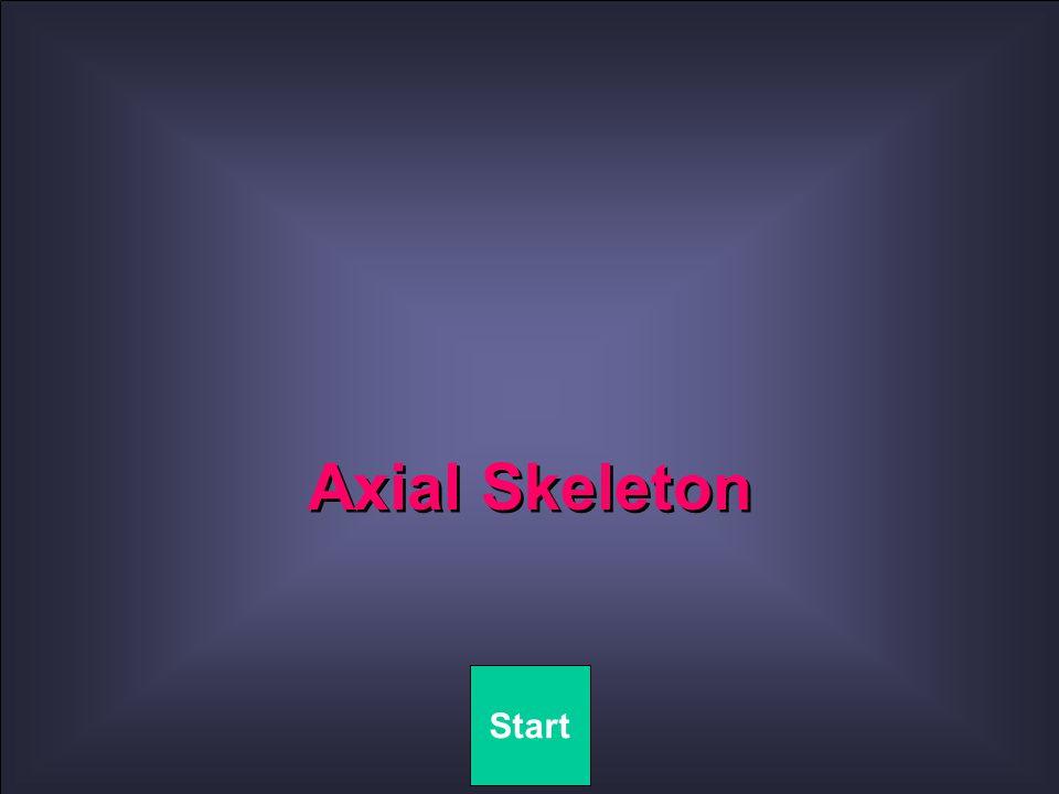 Axial Skeleton Start