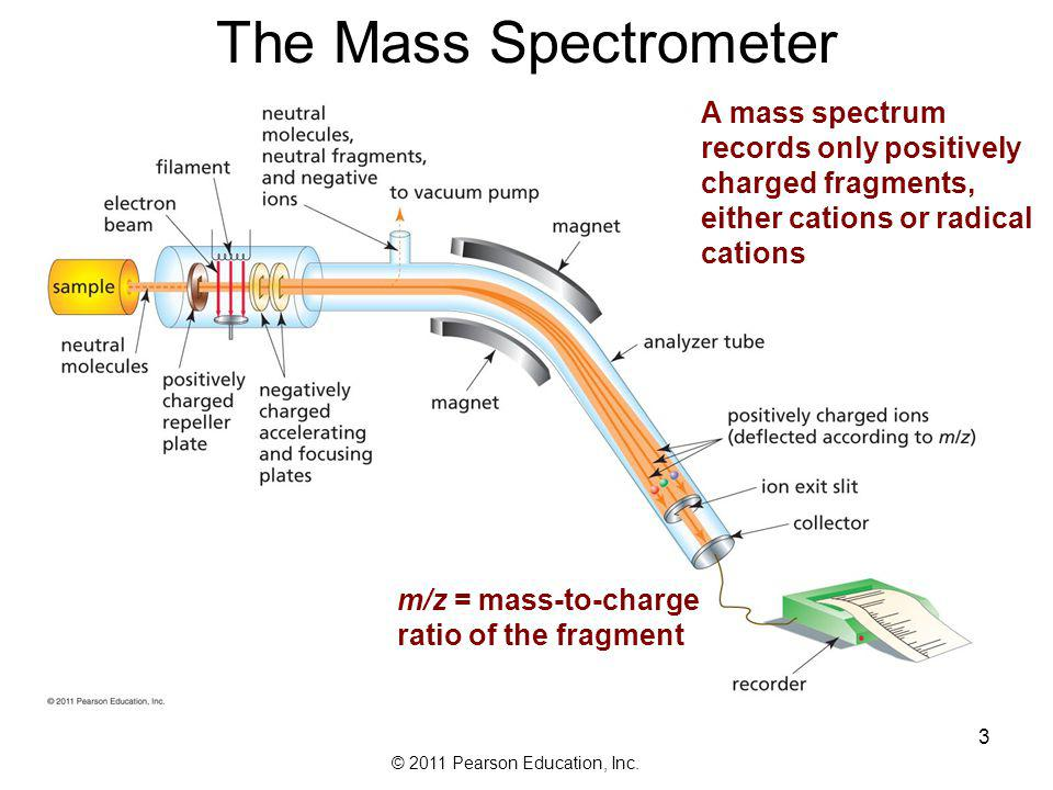 The Mass Spectrometer A mass spectrum records only positively charged fragments, either cations or radical cations.