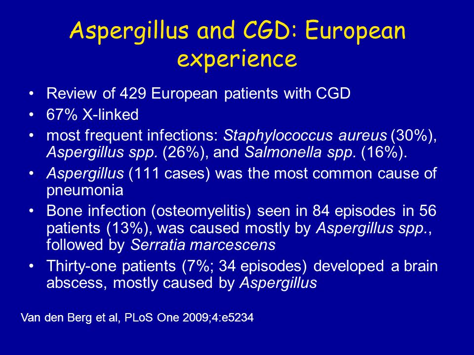 Aspergillus and CGD: European experience