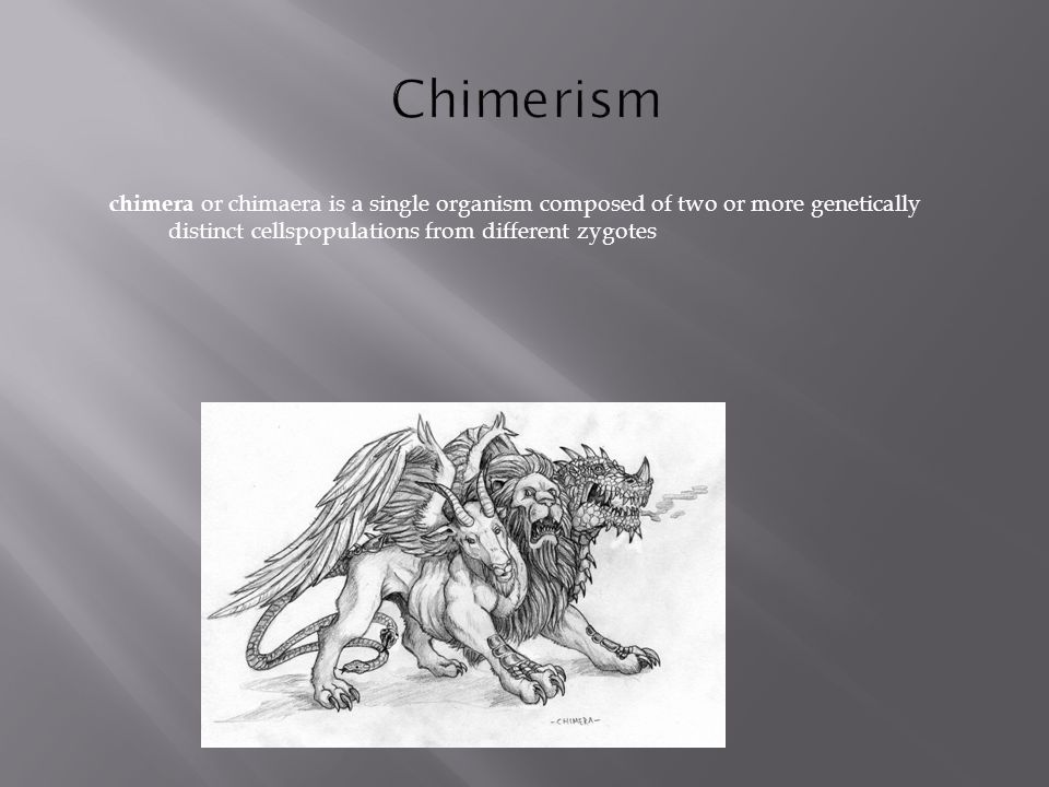 Chimerism chimera or chimaera is a single organism composed of two or more genetically distinct cellspopulations from different zygotes.