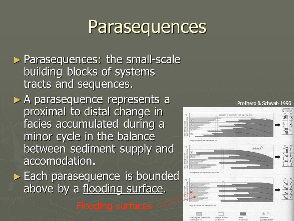 Parasequences Parasequences: the small-scale building blocks of systems tracts and sequences.