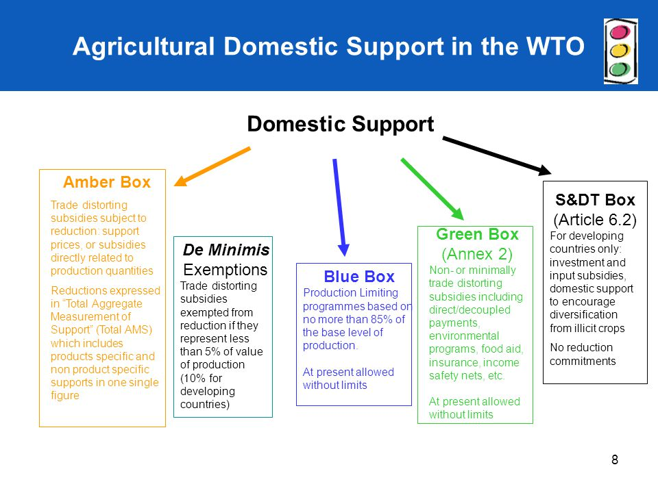 Agricultural Domestic Support in the WTO