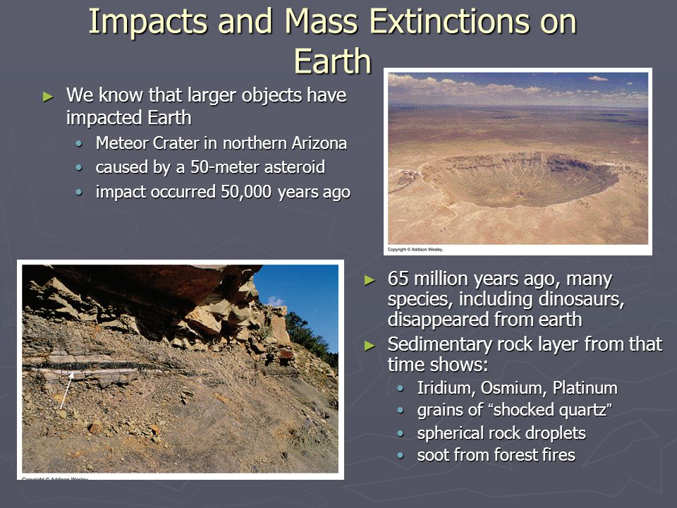 Impacts and Mass Extinctions on Earth