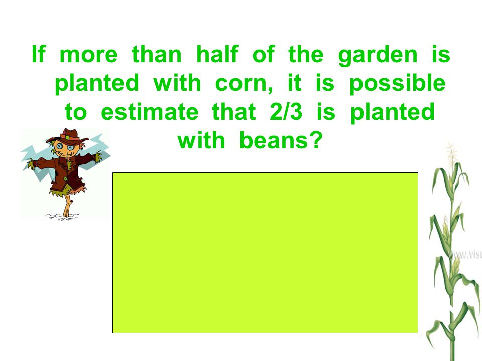 If more than half of the garden is planted with corn, it is possible to estimate that 2/3 is planted with beans