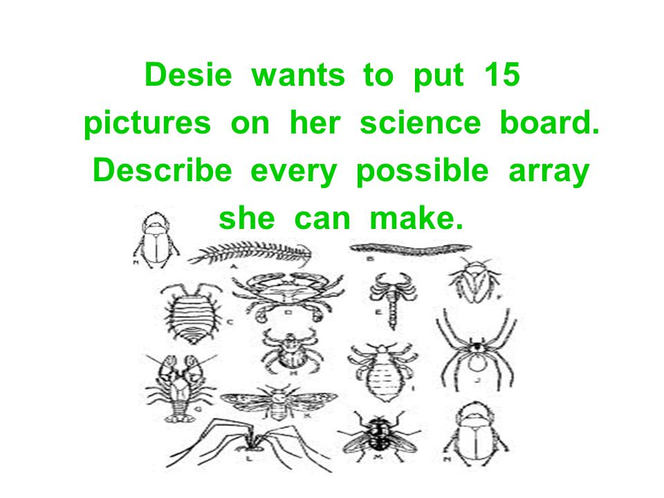 pictures on her science board. Describe every possible array