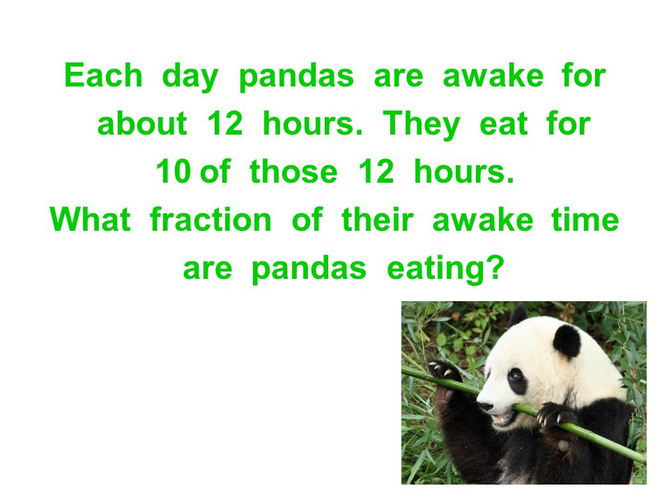 Each day pandas are awake for about 12 hours. They eat for