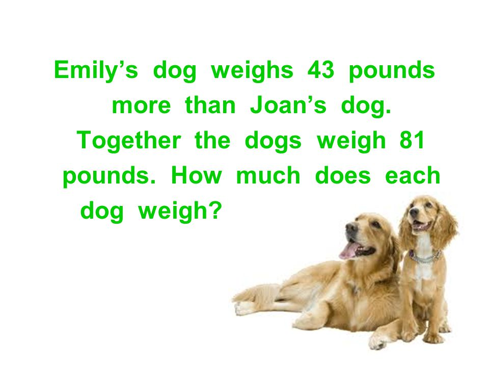 Emily's dog weighs 43 pounds more than Joan's dog.