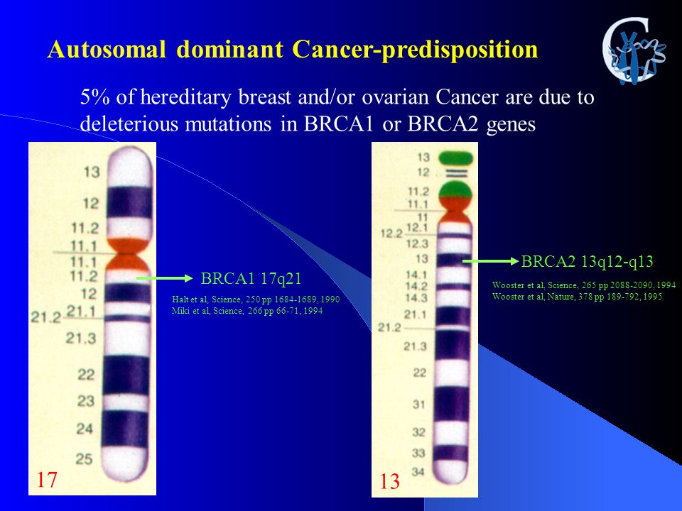 Autosomal dominant Cancer-predisposition