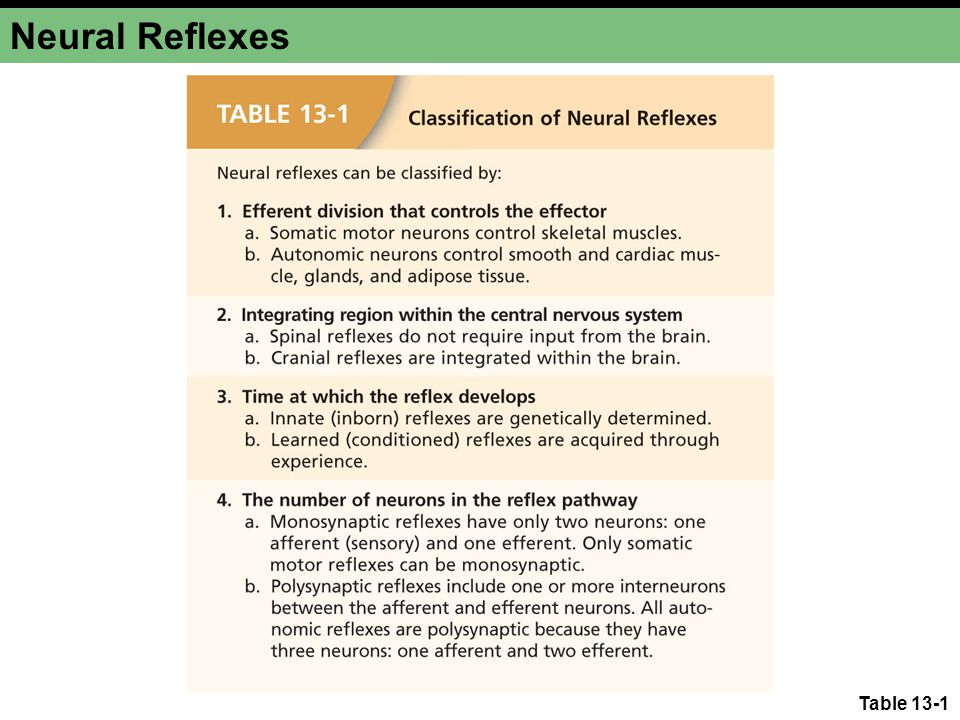 Neural Reflexes Table 13-1