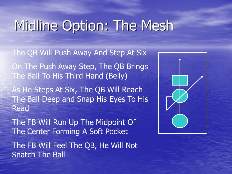 Midline Option: The Mesh