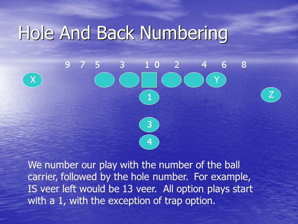 Hole And Back Numbering