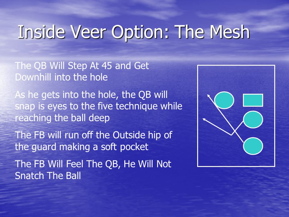 Inside Veer Option: The Mesh
