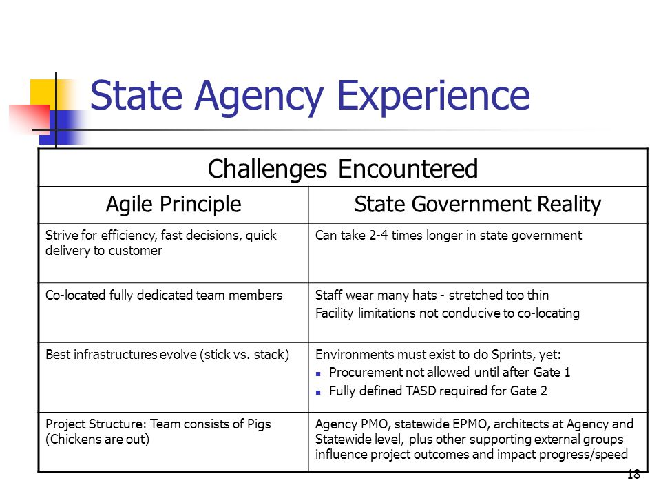State Agency Experience