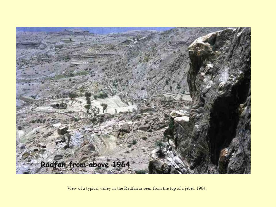 View of a typical valley in the Radfan as seen from the top of a jebel