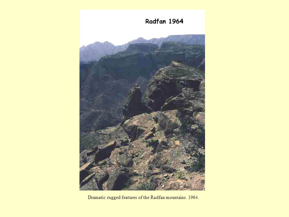Dramatic rugged features of the Radfan mountains. 1964.
