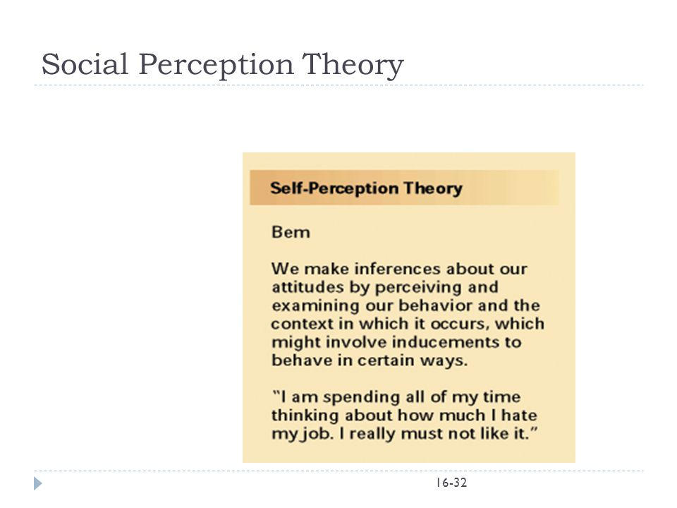 Social Perception Theory