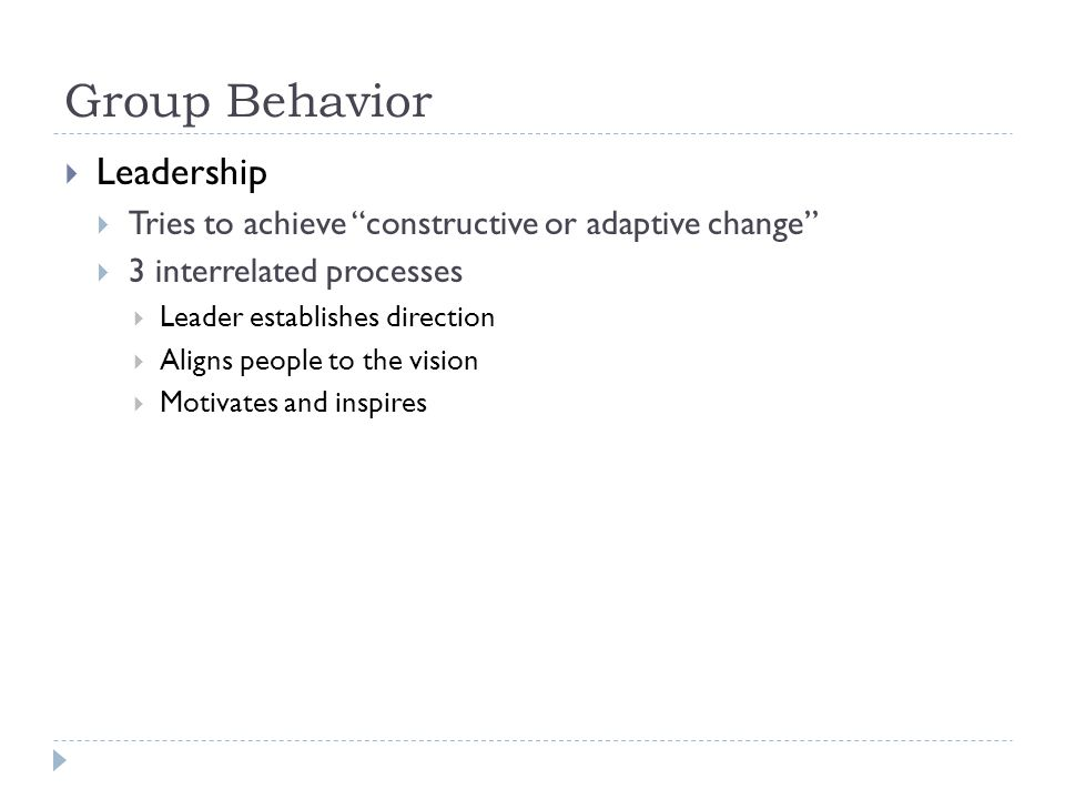 Group Behavior Leadership