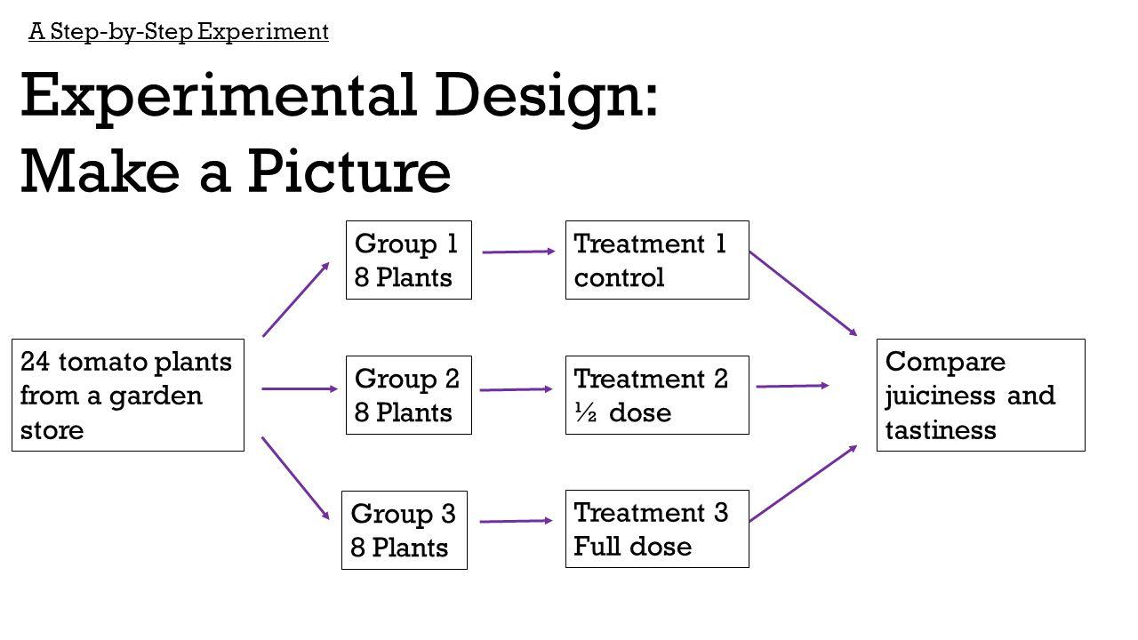 Experimental Design: Make a Picture